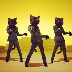 NEKO FUNJATTA  Dancing Black Cats video is incredible! Videohellip