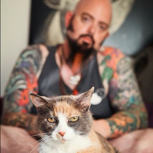 The 50 second scoop on feral cats by jackson galaxy for Jackson galaxy