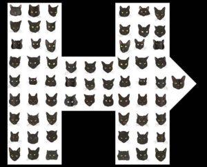 Penelope Kitten joins allblackcats for Hillary! Story on the bloghellip