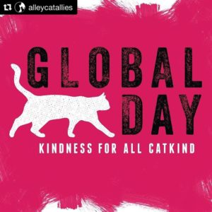 Happy Global Cat Day! Today on the blog we talkhellip