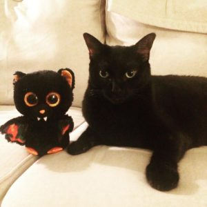 Penelope Kitten and her Halloween Bat Cat wish everyone ahellip