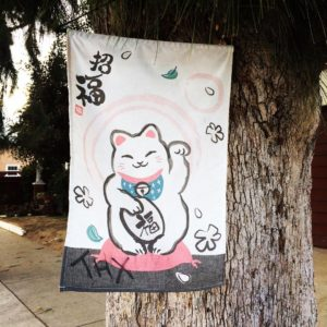 Lucky Cat spotting in Los Angeles Sawtelle area A goodhellip